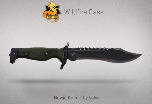 CS:GO Bowie Knife